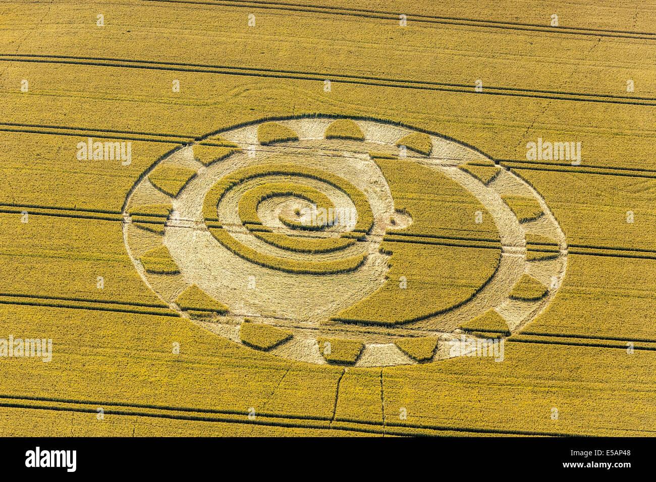 Kornkreis auf die Tiefen zwischen Barbury Castle und Hackpen, südlich von Swindon Wiltshire England Sommer Stockbild
