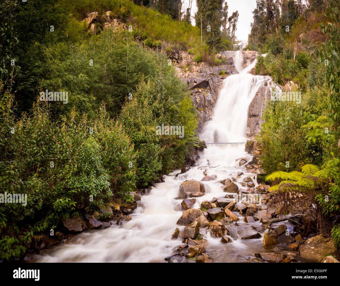 Steavenson Wasserfälle in der Nähe von Marysville, Australien im Winter voller Durchfluss Stockfoto