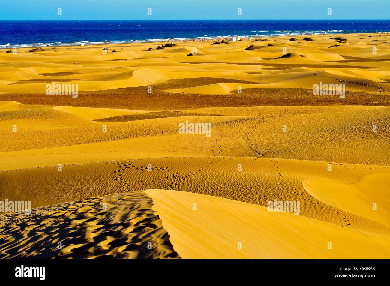 ein Blick auf die natürliche Reserve der Dünen von Maspalomas in Gran Canaria, Kanarische Inseln, Spanien Stockbild