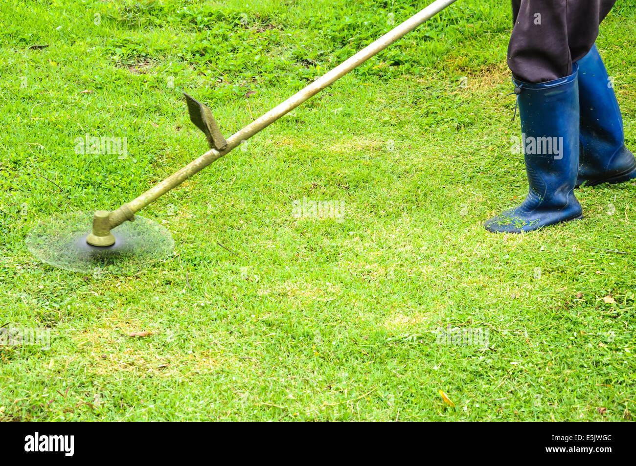Rasenmahen Mit Mahen Maschine Arbeiter Stockfoto Bild 72329948 Alamy