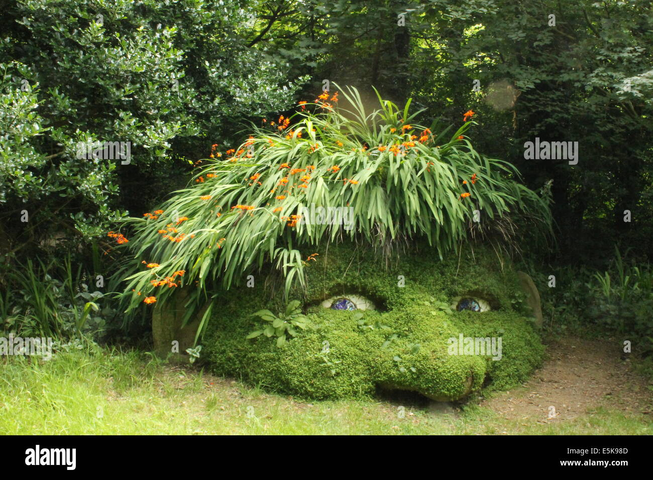 Des Riesen Kopf Wald Skulptur im Wald Garten bei The Lost Gardens of Heligan, Cornwall, England, UK Stockbild