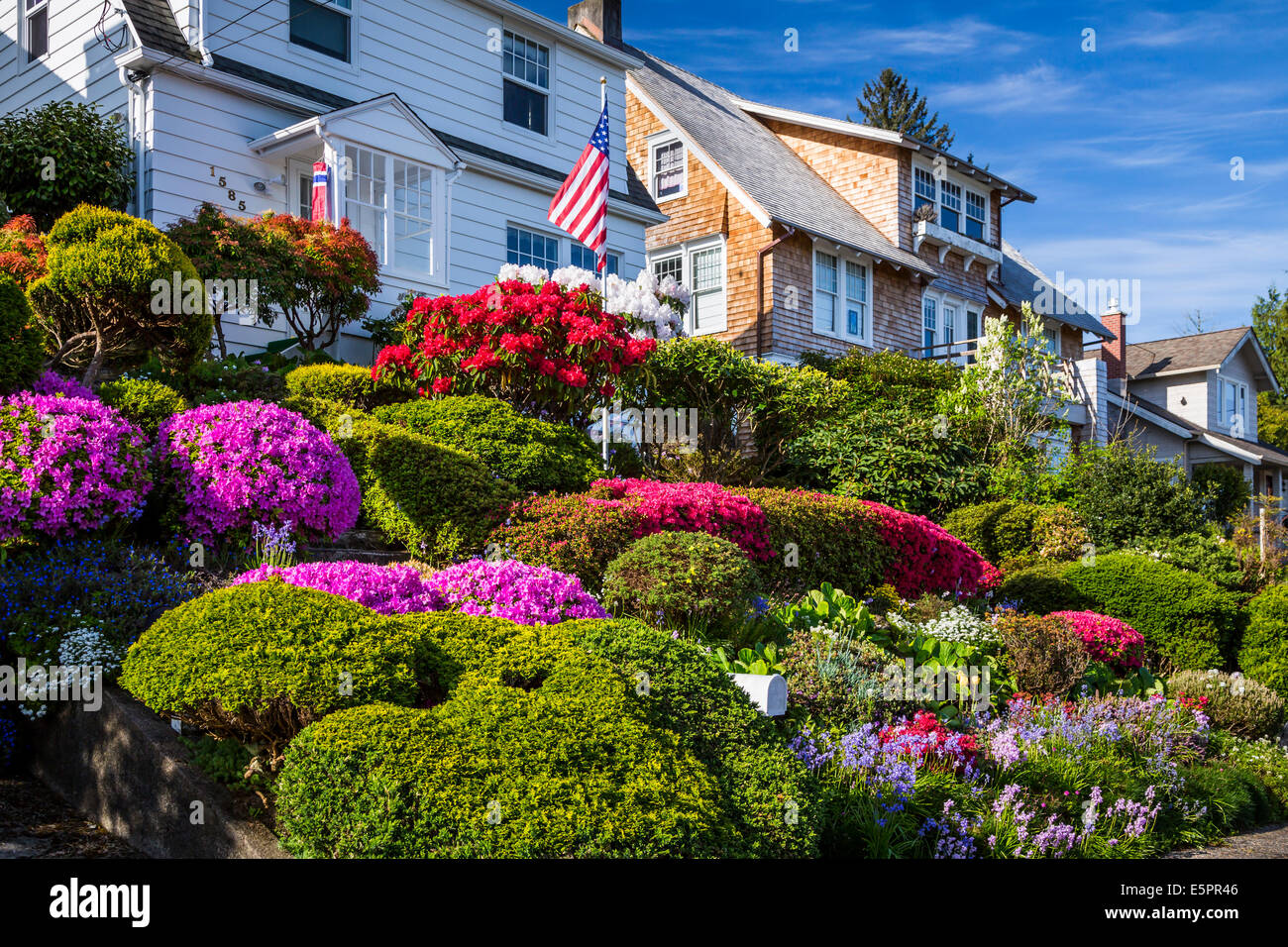 ein haus mit einem rhododendron und azaleen garten in astoria oregon usa stockfoto bild. Black Bedroom Furniture Sets. Home Design Ideas