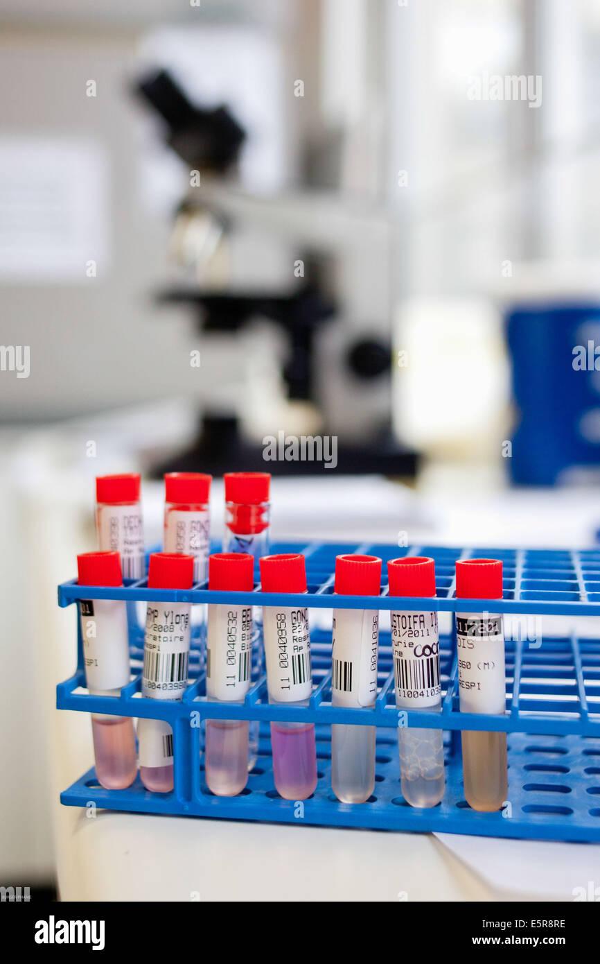 Virologie-Labor. Stockbild