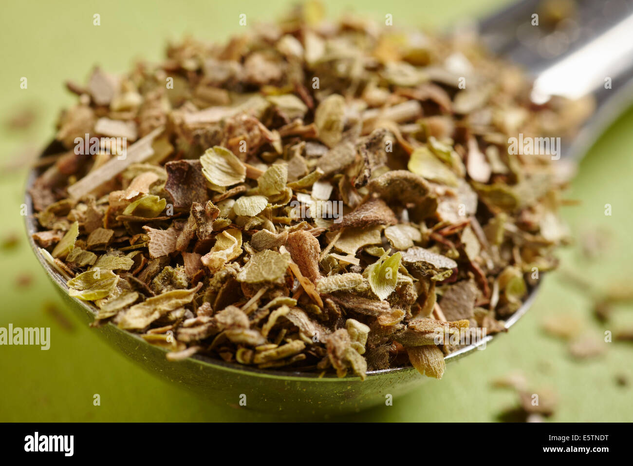 Einen Teelöffel getrockneter Oregano Stockbild