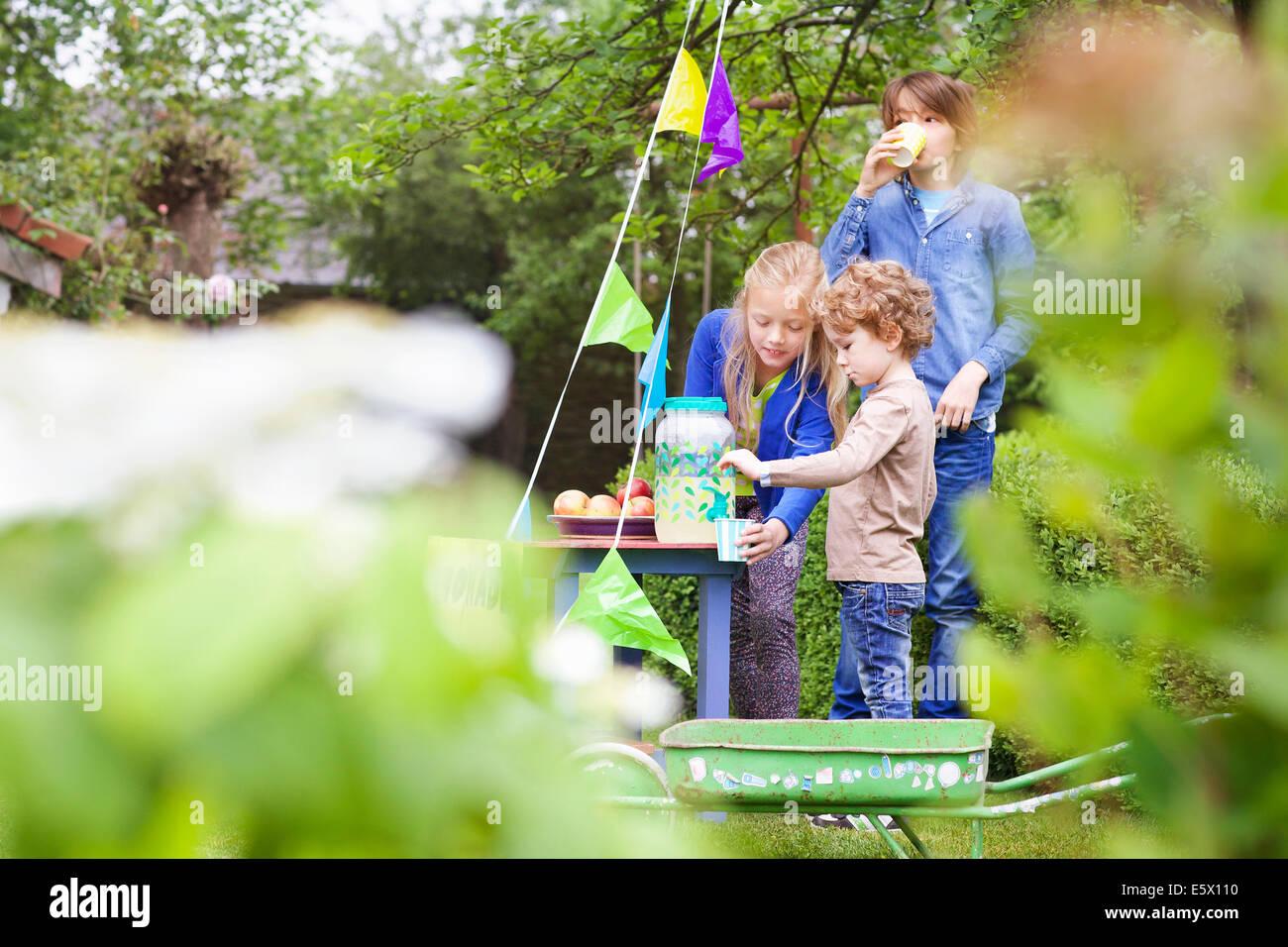 Geschwister bei ihrer Limonade stehen in ihrem Garten Stockbild