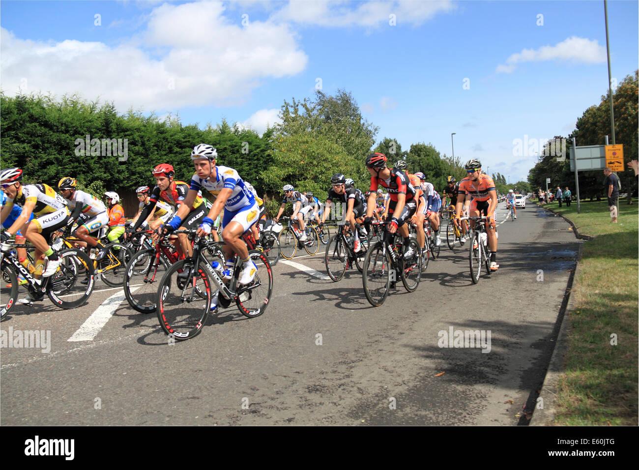 East Molesey, Surrey, UK. 10. August 2014. Aufsichtsrechtlichen RideLondon-Surrey Klassiker. Hauptfeld. 147 Radprofis Stockbild