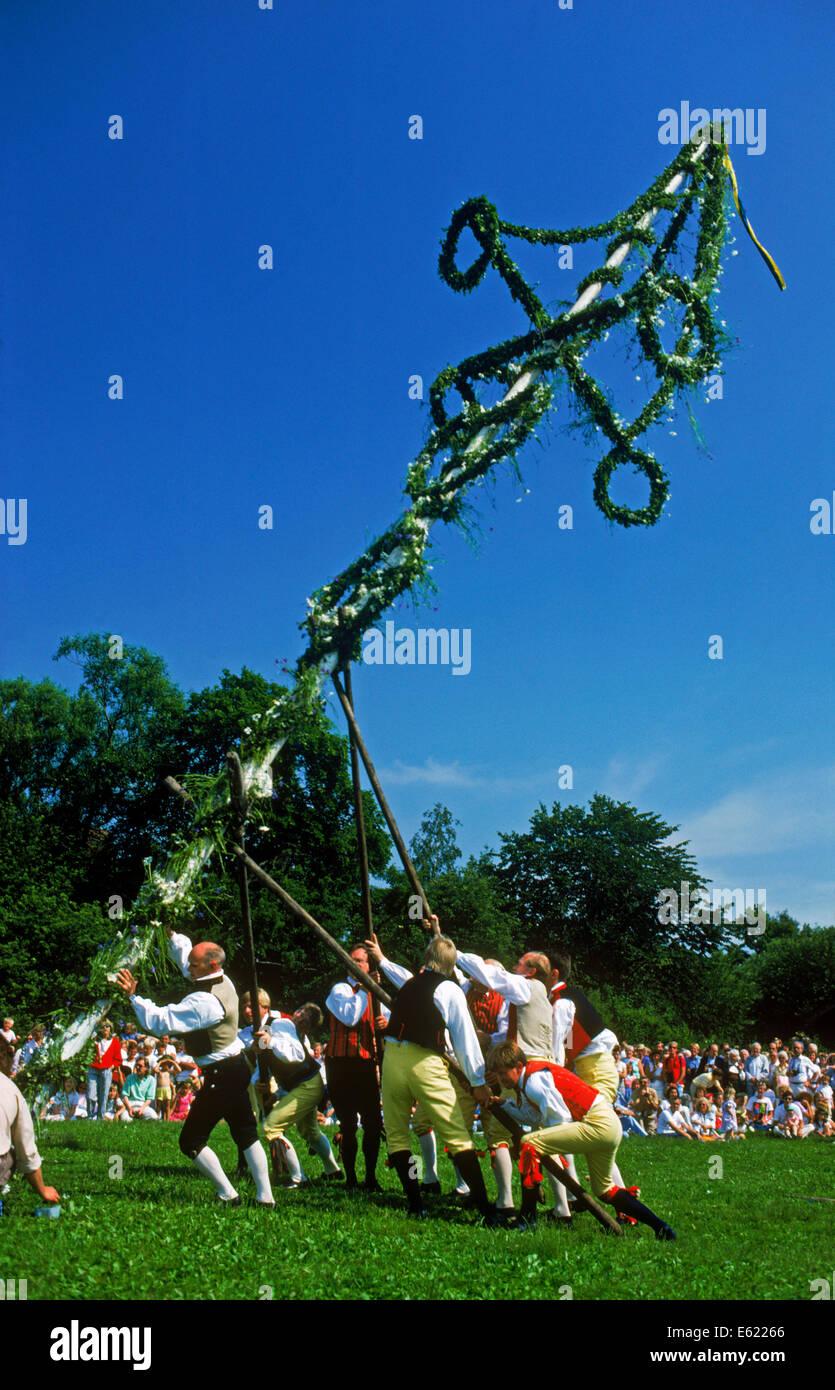 Traditionelle Anhebung der Maibaum in Skansen Park am Mittsommer ist Tag in Stockholm Stockbild