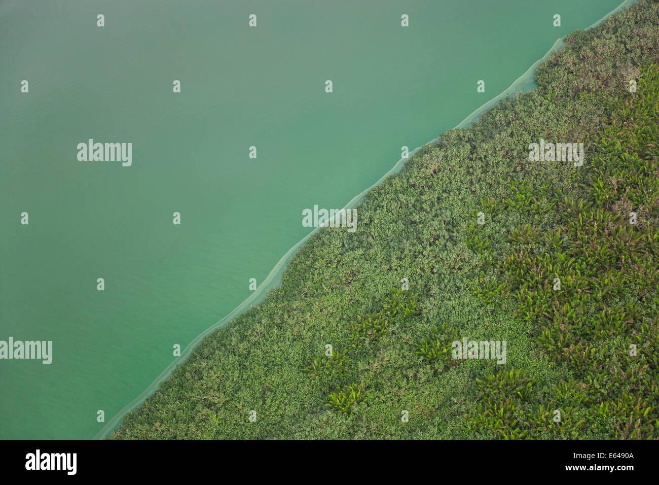 Grüner See, Rio De Janeiro; Brazilien Stockfoto