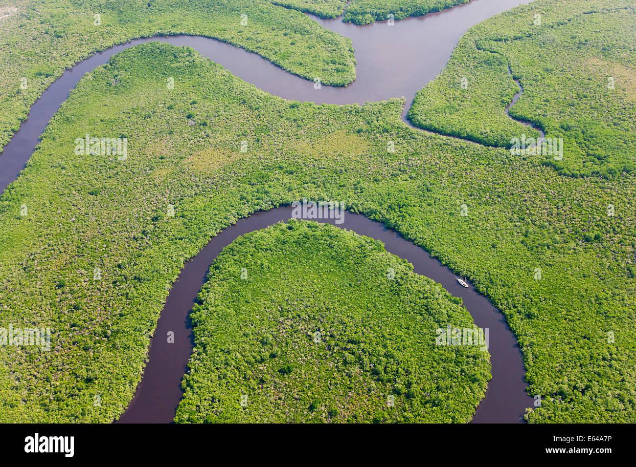 Segeln Sie, Boot & Luftaufnahme des Regenwaldes, Daintree River, Daintree Nationalpark, Queensland Australien Stockfoto