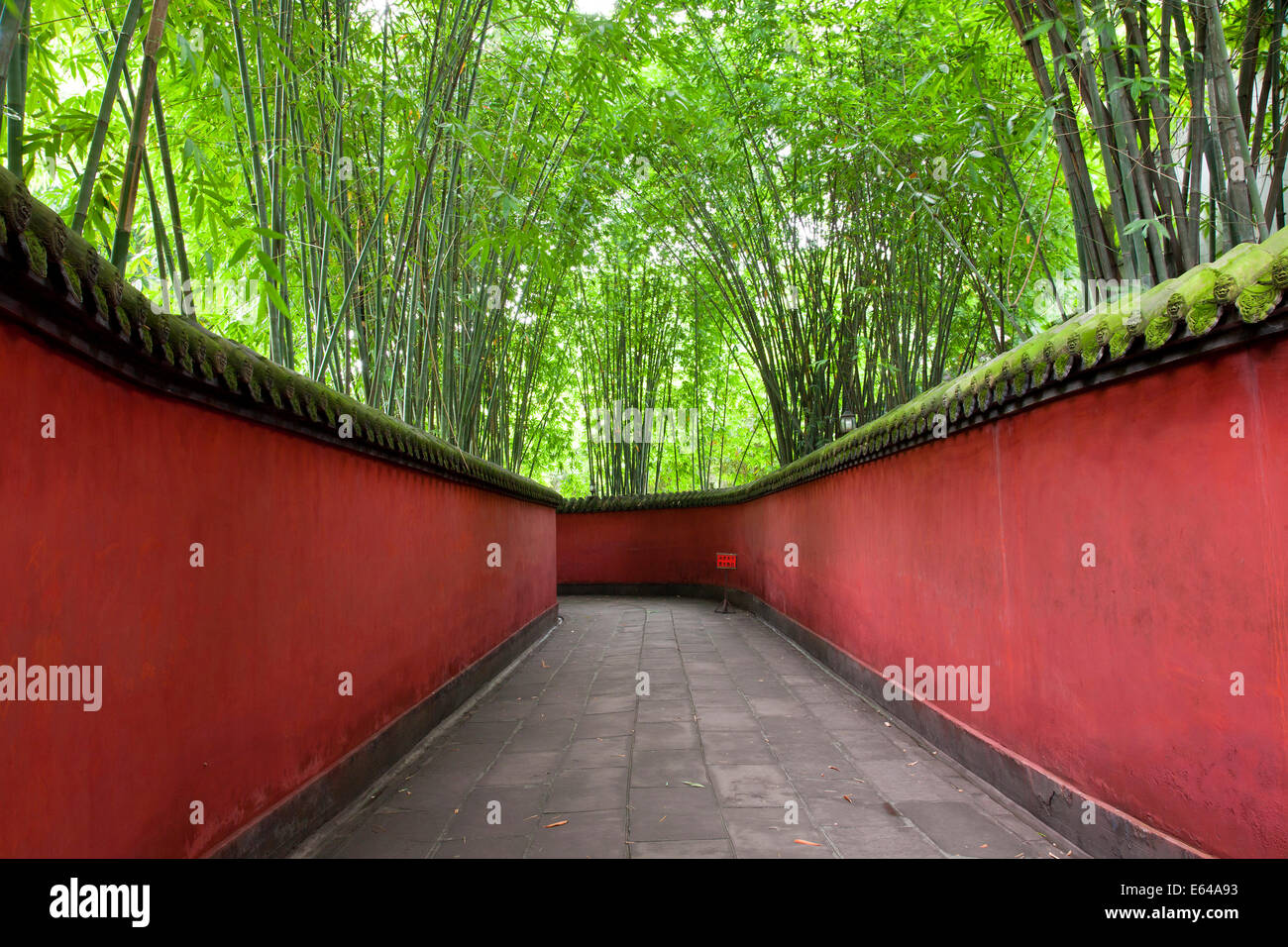 Gehweg mit Bambus Baldachin, Wuhou Schrein, Chengdu, Sichuan, China Stockbild
