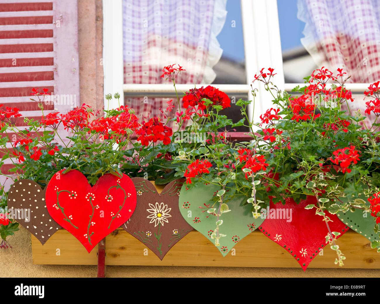 Fenster Blumenkasten Geranie Stockfoto Bild 72778604 Alamy