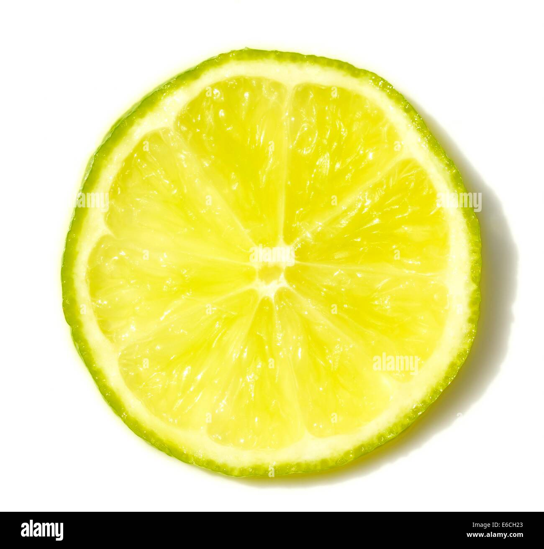 Ein Stück von Lime Zitrusfrucht Stockbild