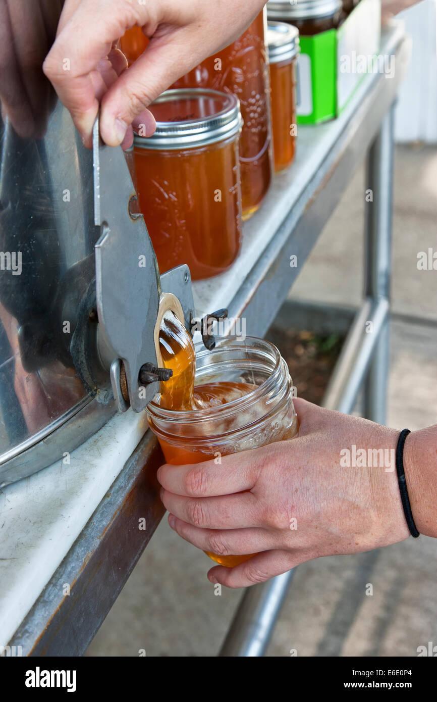 Honig aus Pfirsichblüten, Pint Glas füllen. Stockbild