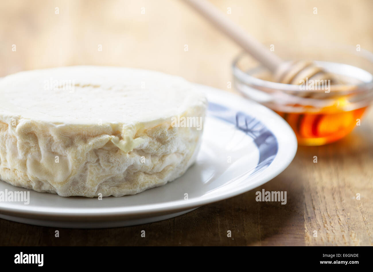 Italienische frische Ziegenkäse genannt Robiola di Roccaverano und Honig Stockbild