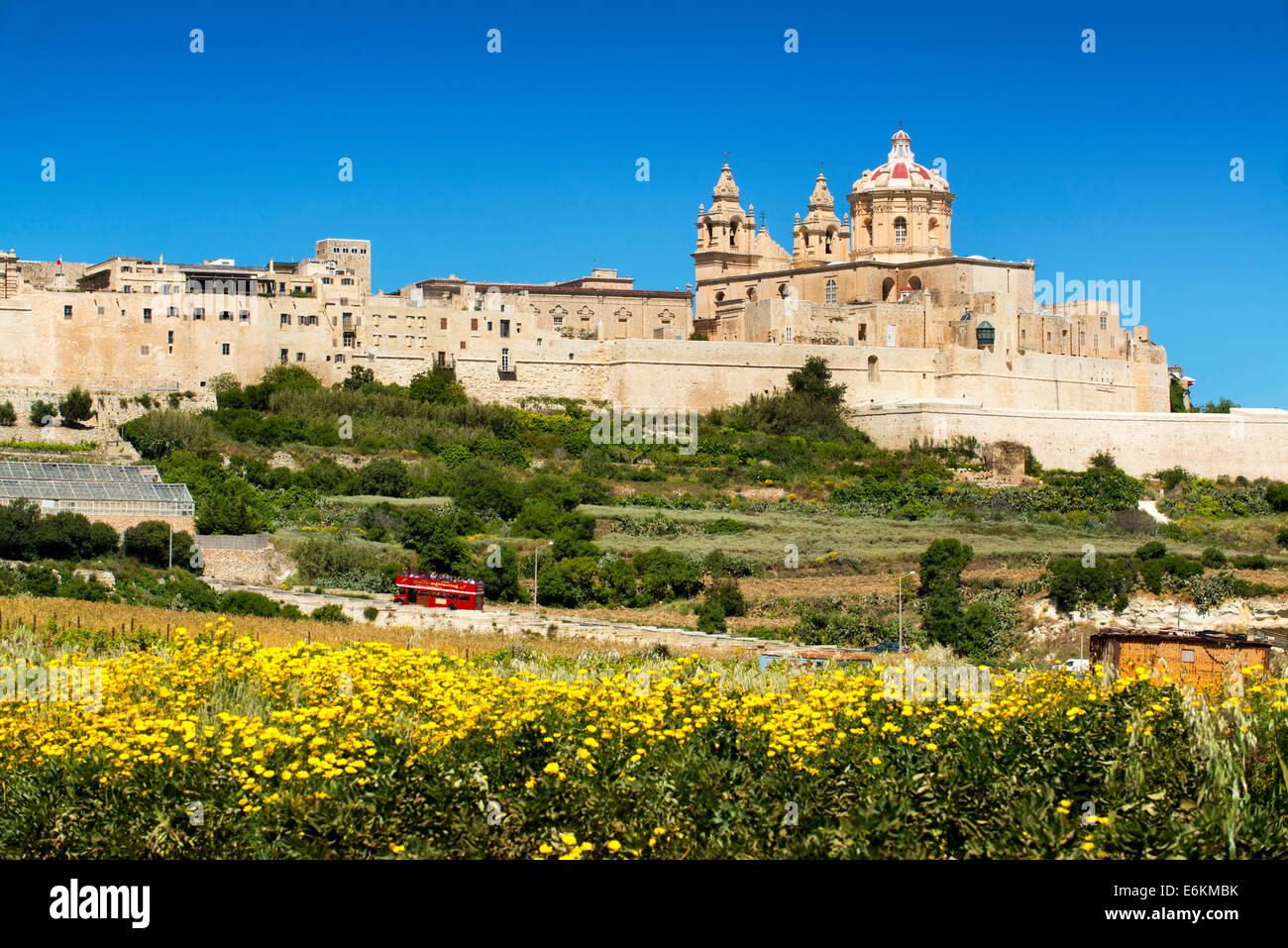 Mdina, Malta, Stockbild