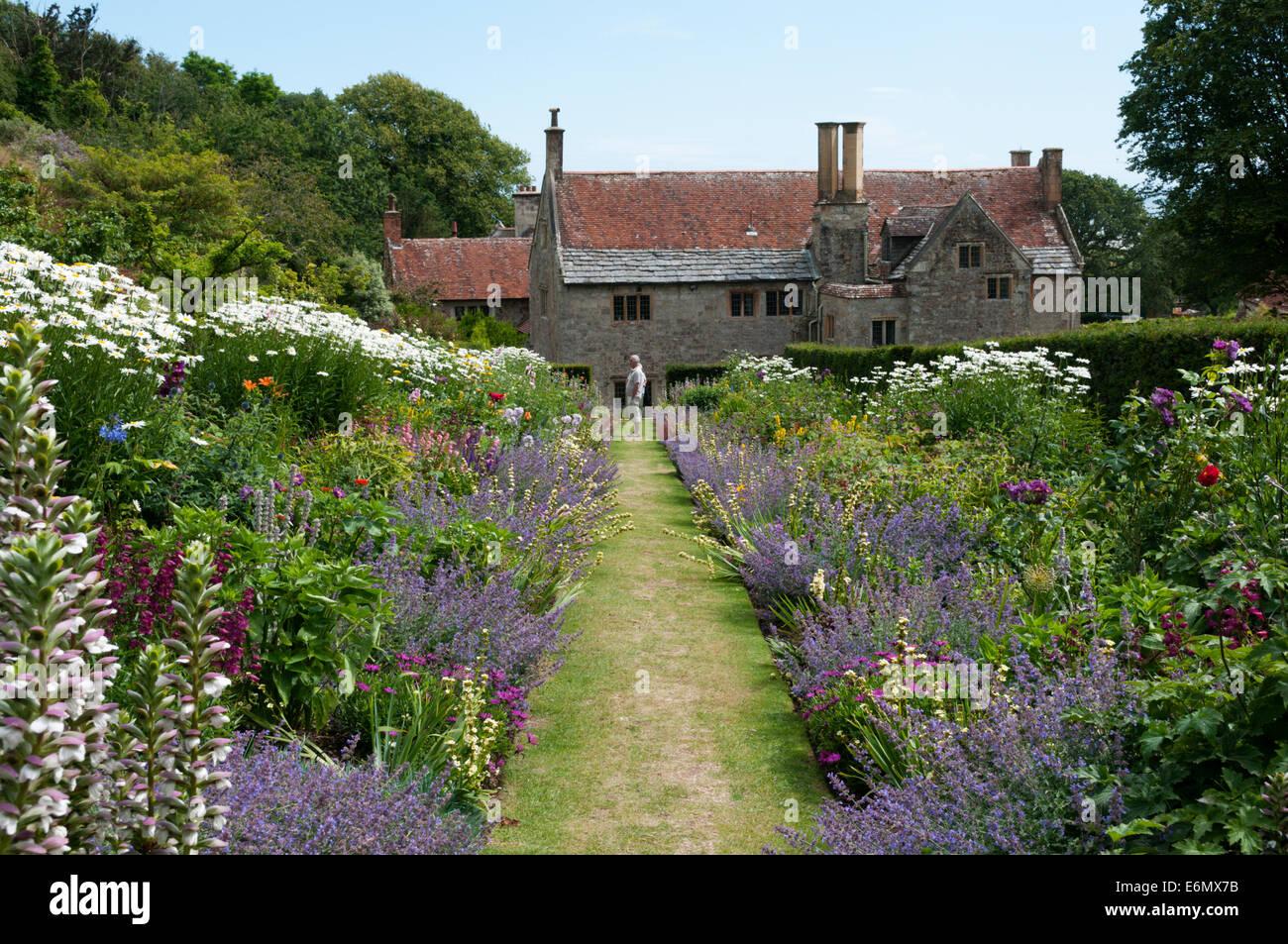 Krautige Doppelrand im Mottistone Manor auf der Isle Of Wight. Stockbild