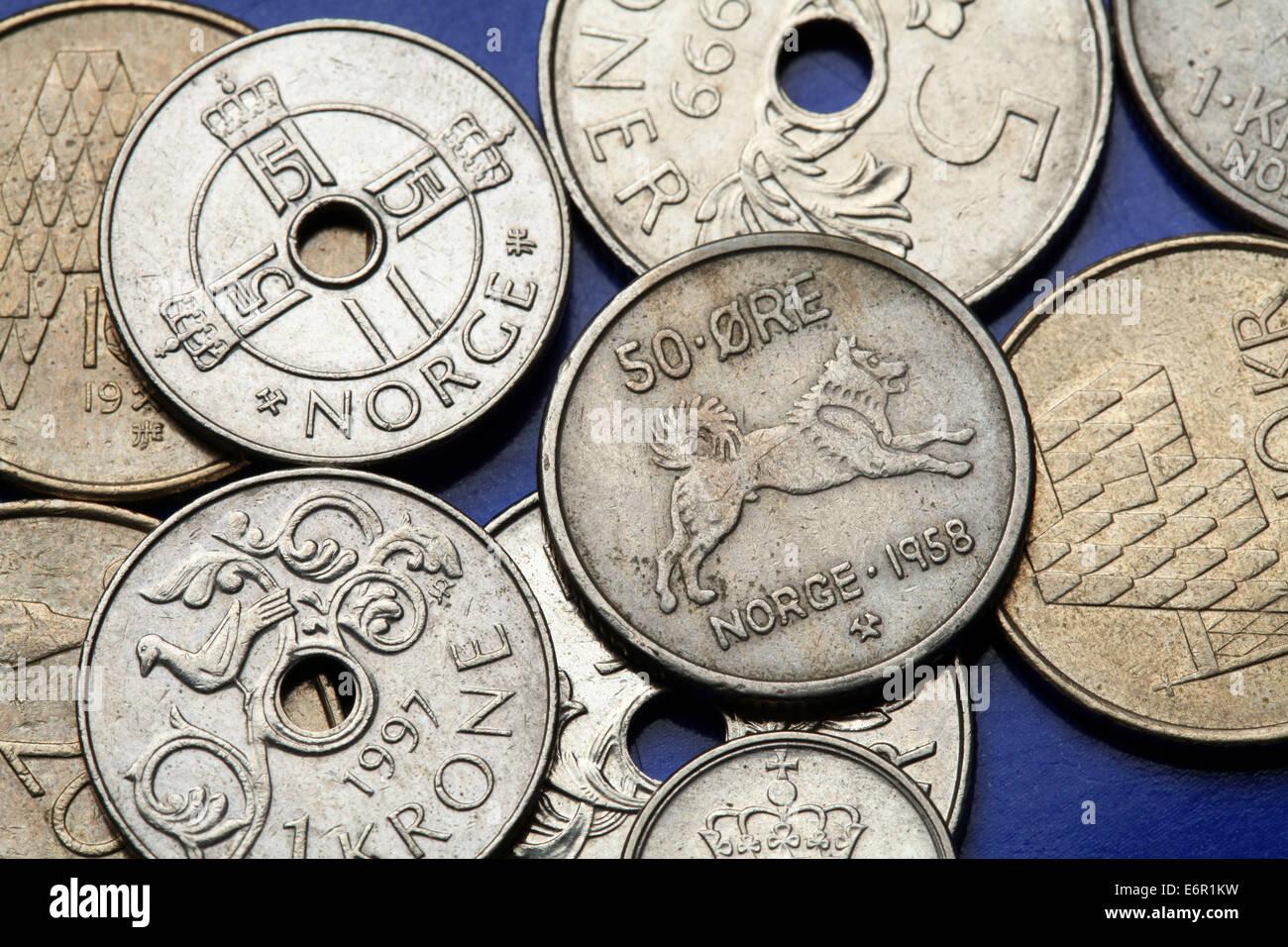 Münzen Von Norwegen Norwegischer Elchhund Hund Dargestellt In Den