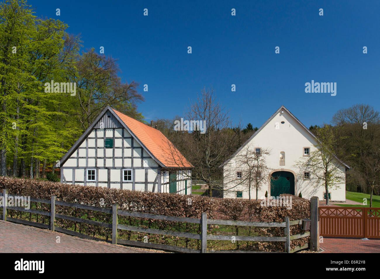Bauernhaus, Bexadde-Tal, Damme, Landkreis Vechta ...