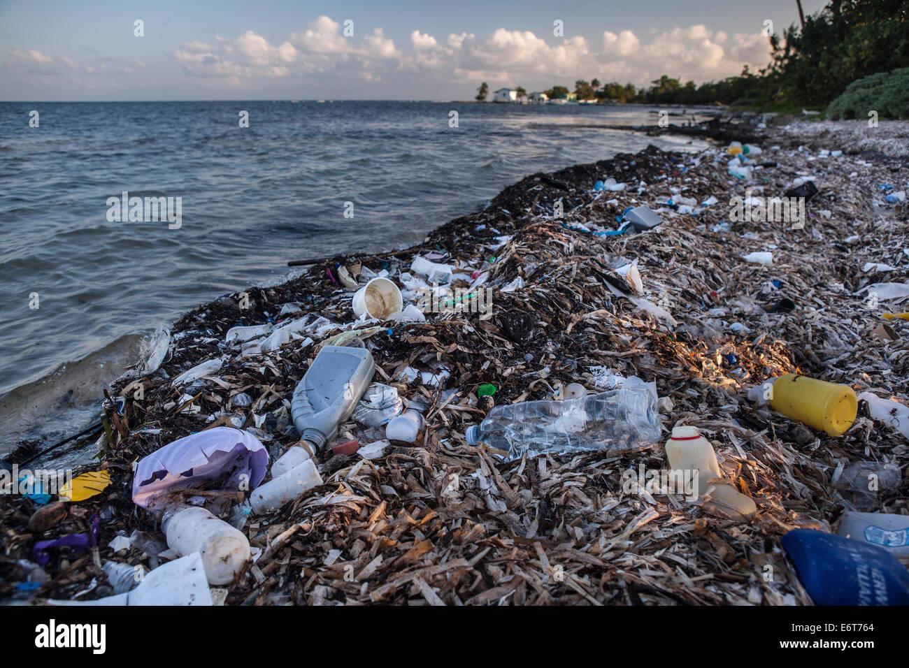 Plastikmüll angeschwemmt am Ufer, Turneffe Atoll, Karibik, Belize Stockbild