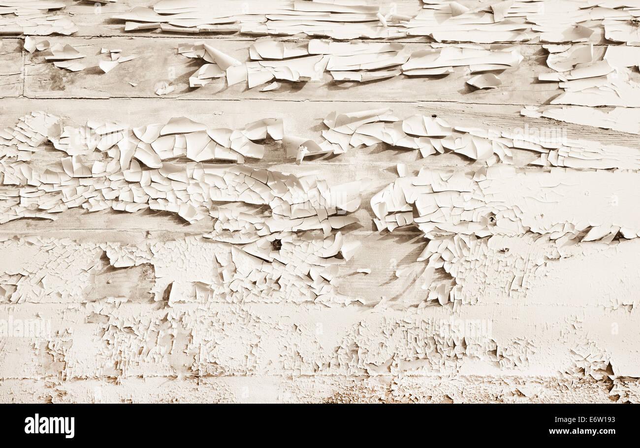 Shabby Chic Holz shabby-chic-stil oder vintage-hintergrund aus weißem oder beigem