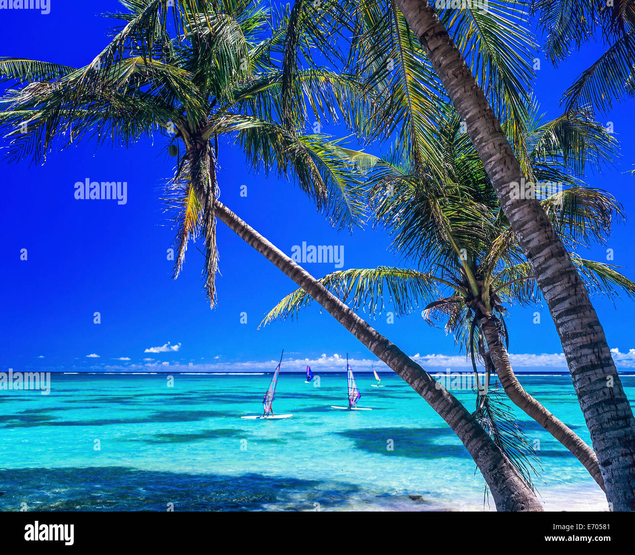 Guadeloupe Beach: Caribbean Sandy Beaches Guadeloupe Stockfotos & Caribbean
