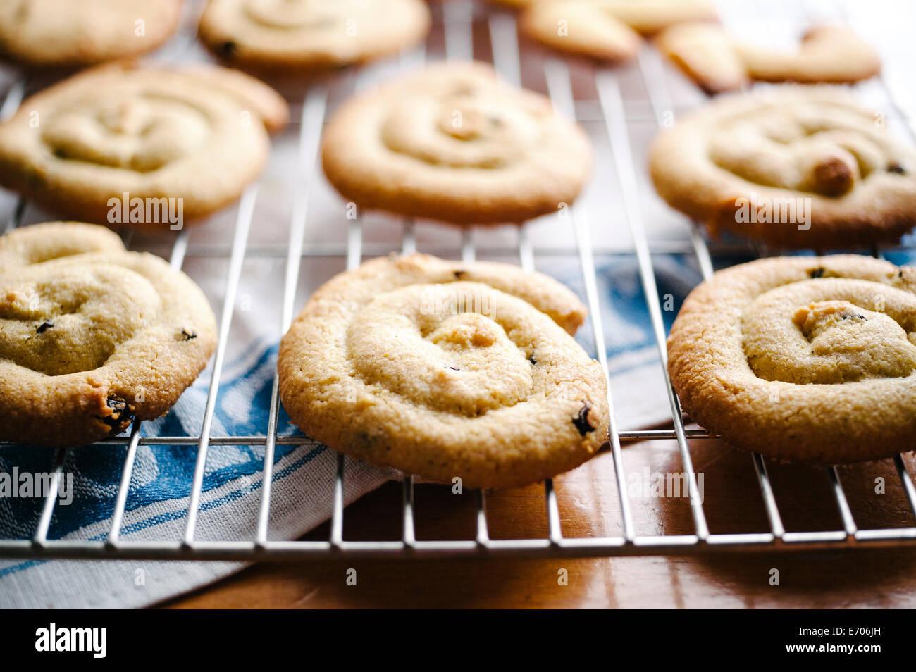 Hausgemachte Kekse Stockfoto