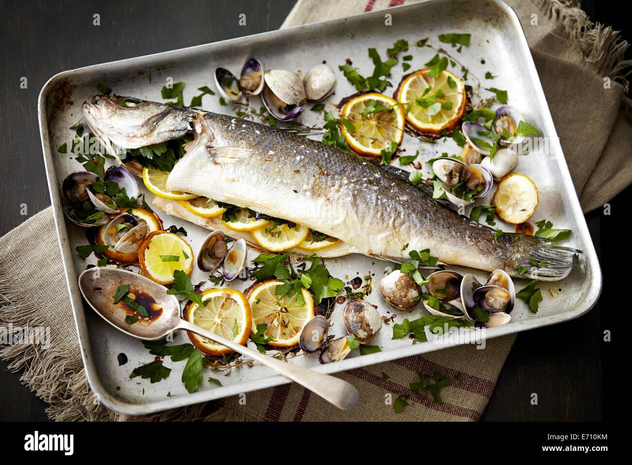 Backblech mit gebackener Fisch mit Zitronen und Kräutern gefüllt Stockbild