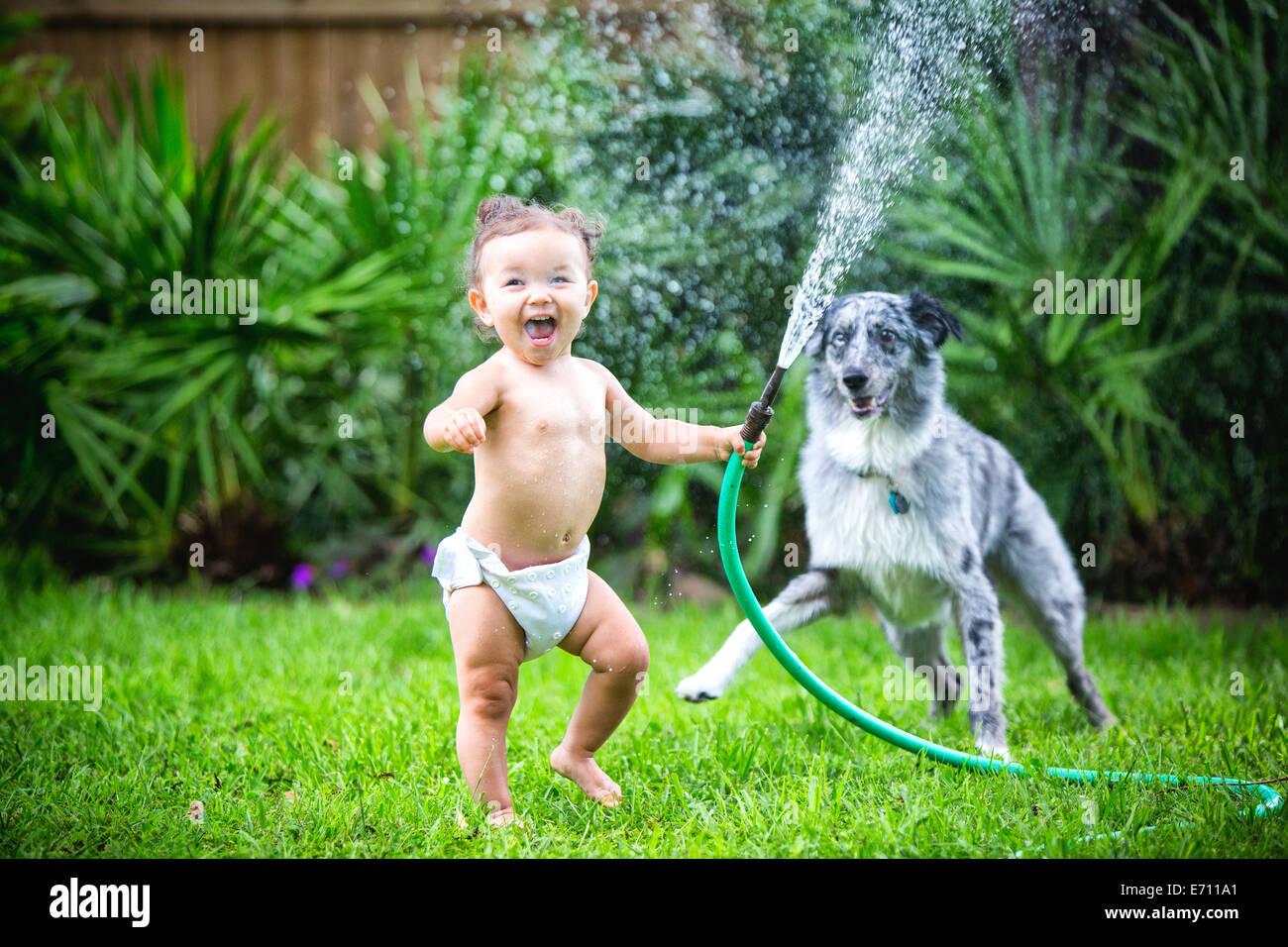 Kleinkind Mädchen mit Wasserschlauch, spielen mit Hund Stockbild