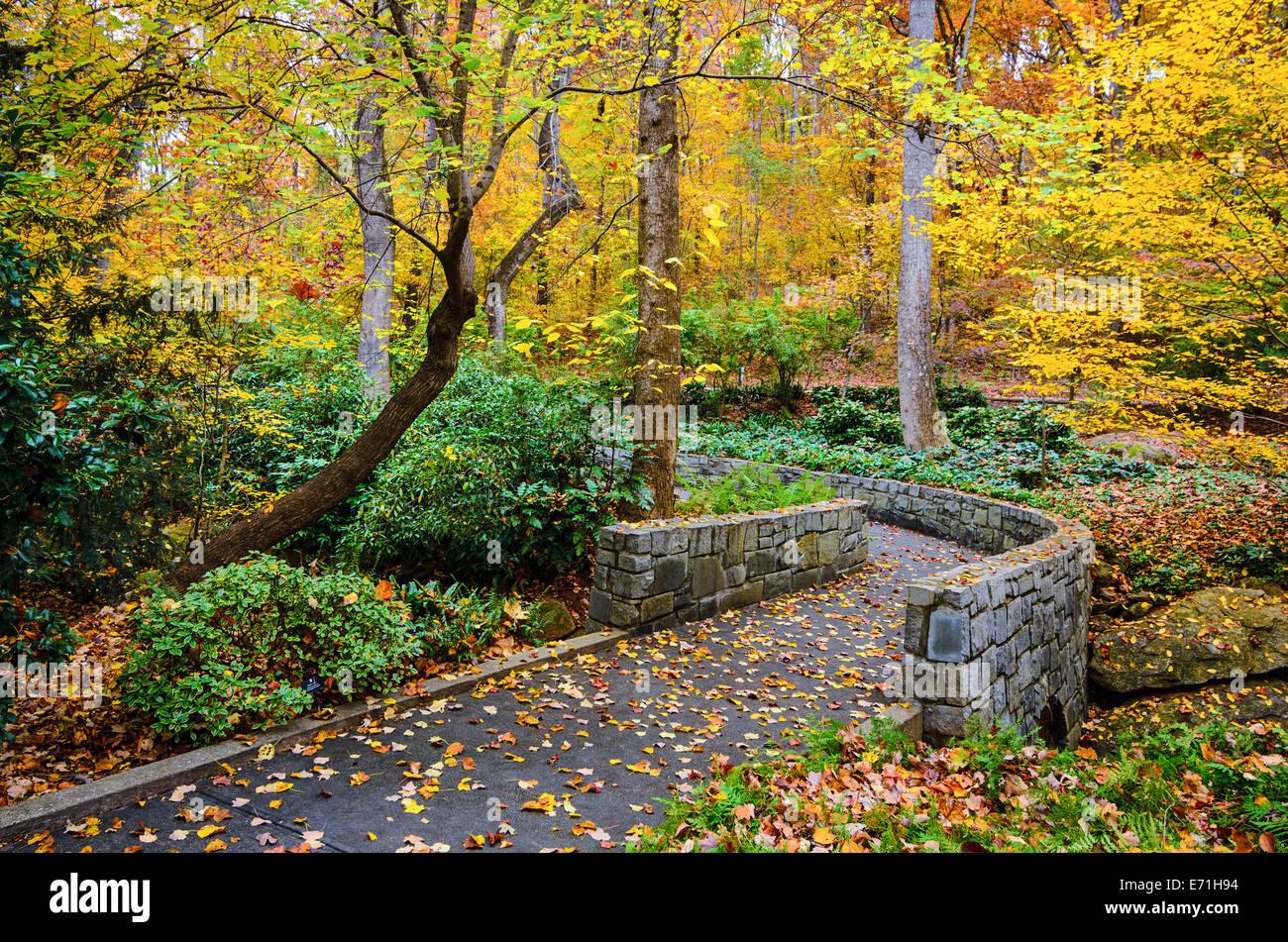 Herbst-Trail in botanischen Gärten in Athens, Georgia, USA. Stockbild