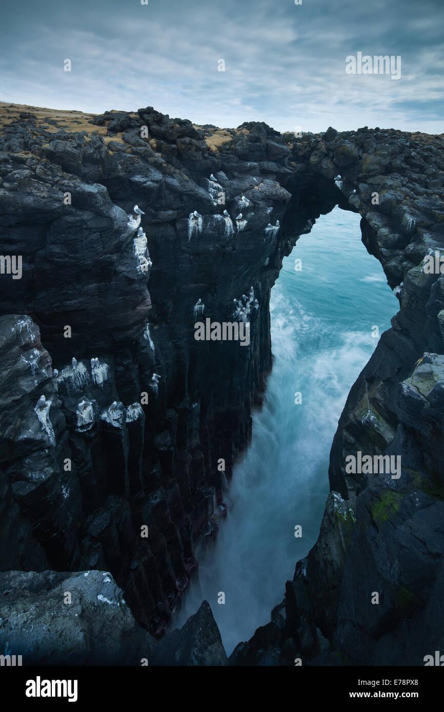Meereshöhle gestreift mit den Guano Eissturmvögel und Dreizehenmöwen, Nr. Arnastapi, Snaefellsnes Stockbild