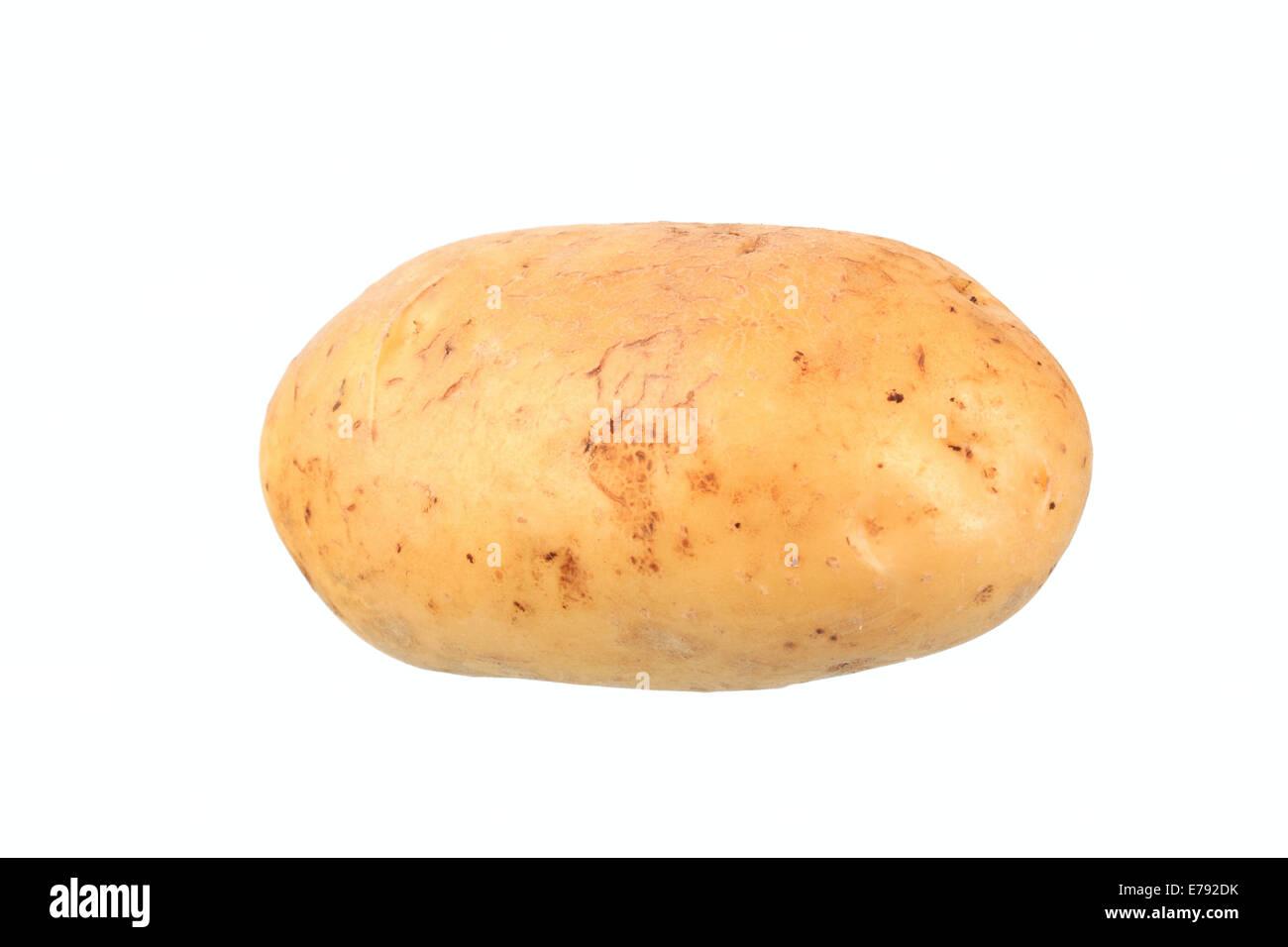 Kartoffel, Talent-Vielfalt Stockbild