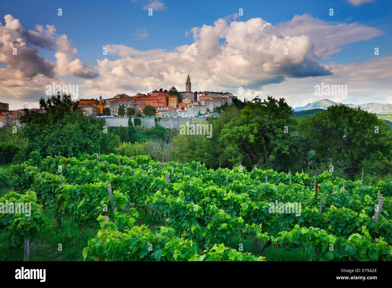 Labin - Istrien, Kroatien Stockbild