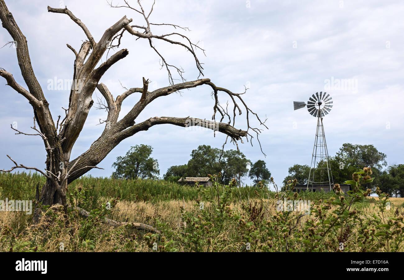 Traditionelle Wind angetriebene Wasserpumpe in einem Feld mit verfallenen Gebäude mitten im überwucherten Stockbild