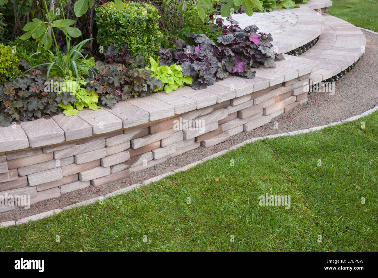 Garten   Bacchus   Mit Blick Auf Garten Steinmauer Ausgelöst Bett Schritte  Rasen Rasen Anpflanzen Von Heuchera Und B