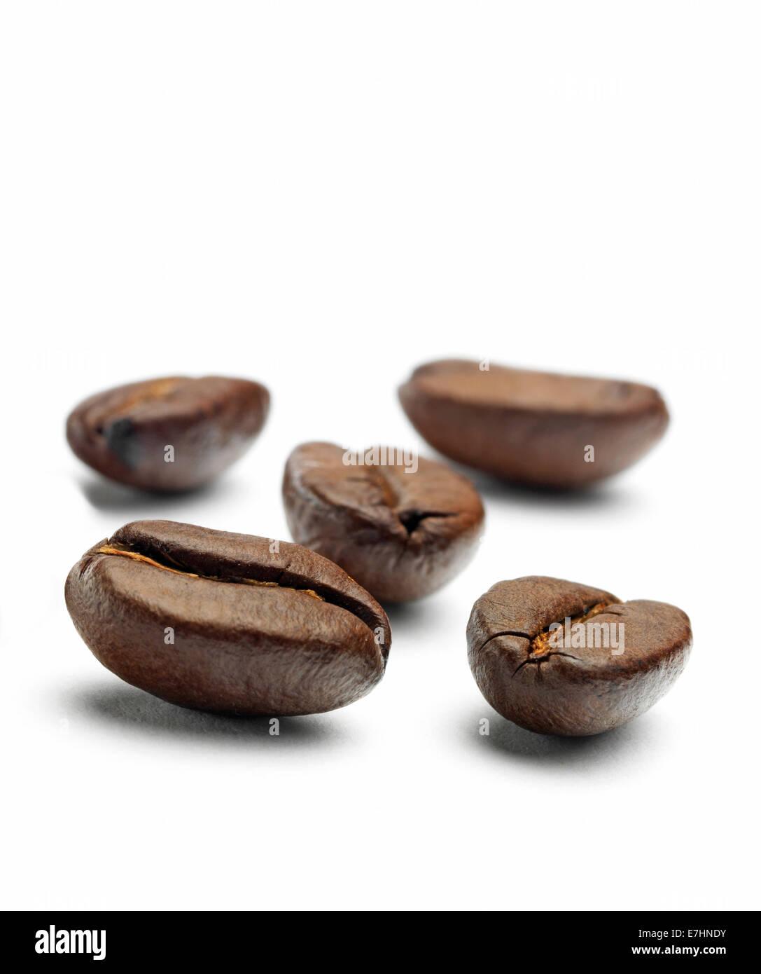 Isolierte Kaffeebohnen Stockbild