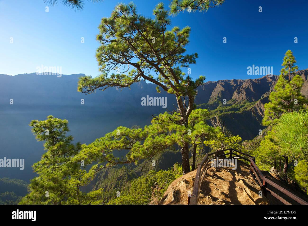 Kanaren, Kanarische Inseln, Inseln, La Palma, Spanien, Europa, draußen, Tag, niemand, Parque Nacional De La Stockbild