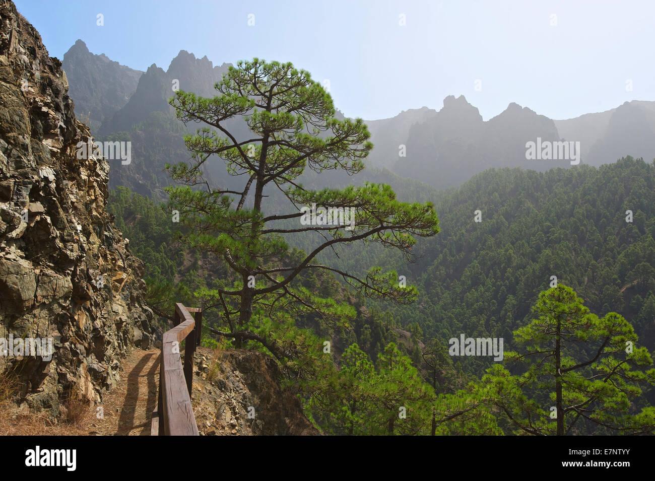 Kanaren, Kanarische Inseln, Inseln, La Palma, Spanien, Europa, draußen, Tag, niemand, Berg, Berge, Berglandschaft, Stockbild