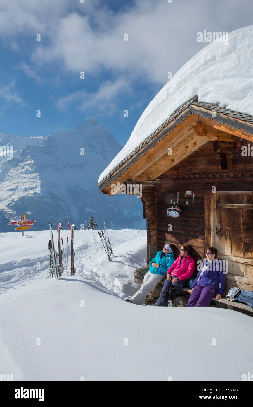 Ski, Ski-Tourist, Grindelwald, ridge, Eigers, Berg, Berge, Ski, Skifahren, Carving, Winter, Wintersport, Kanton Stockbild