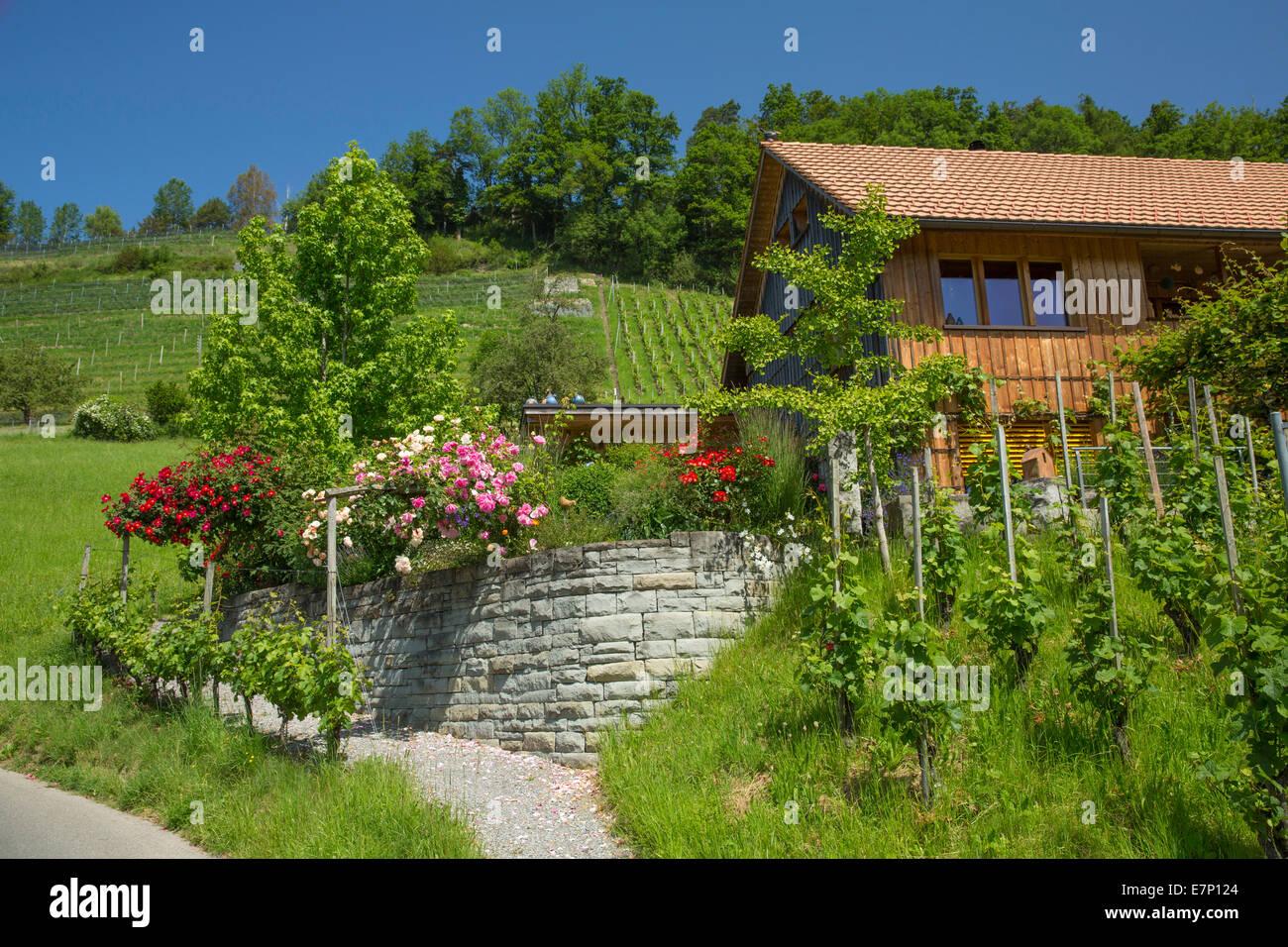 Häuser, Wohnungen, Wienacht-Tobel, Kanton Appenzell Ausserrhoden, Lutzenberg, Schweiz, Europa, Stockbild