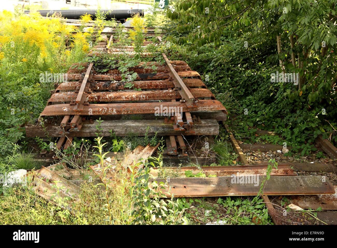 Faule Bahngleise im grünen, Reutlingen, Deutschland, 2. September 2010. Stockbild