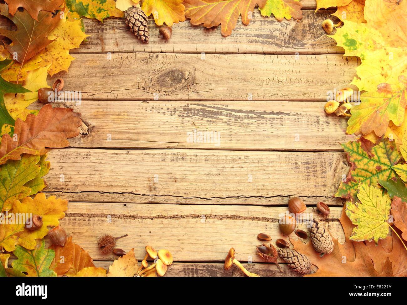 Herbst Hintergrund Mit Blatter Pilze Und Eicheln Auf Holzbrett