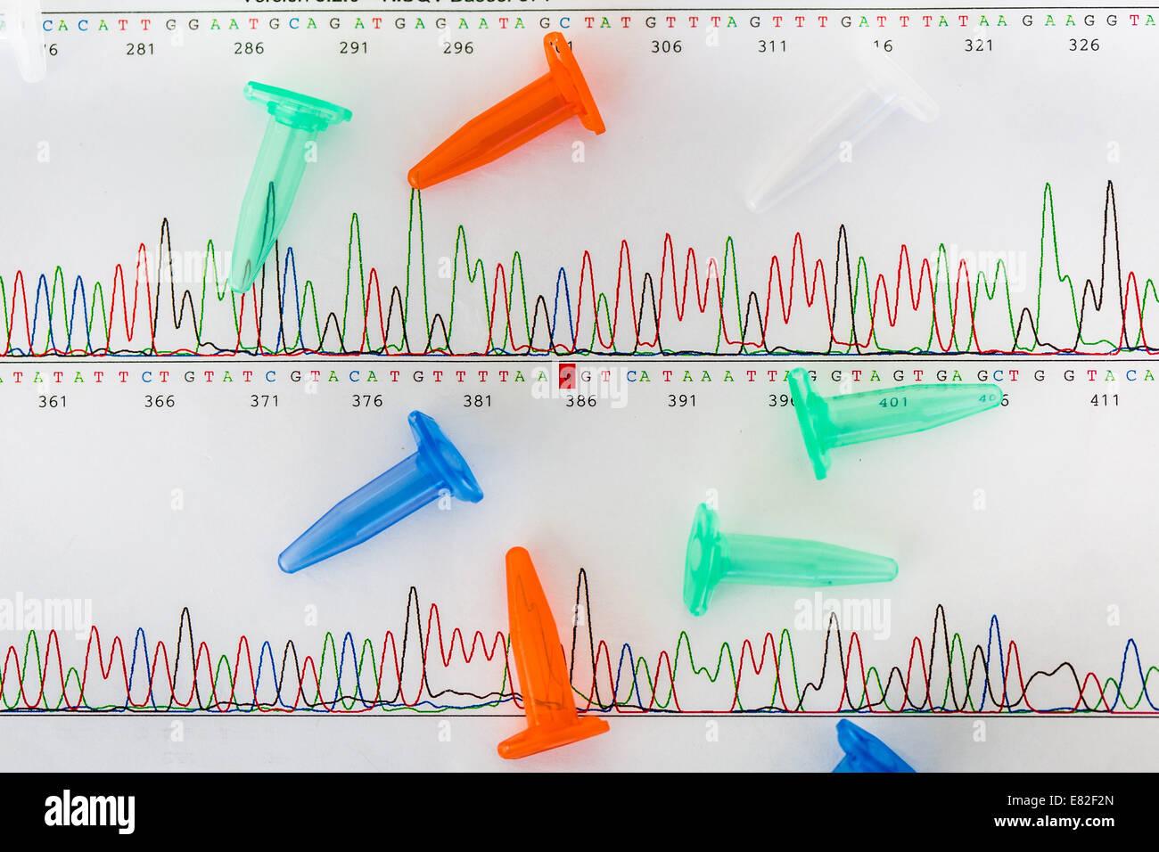 Eppendorf-Röhrchen auf Grafiken zeigen die Ergebnisse der Sequenzierung der DNA (Desoxyribonukleinsäure). Stockbild
