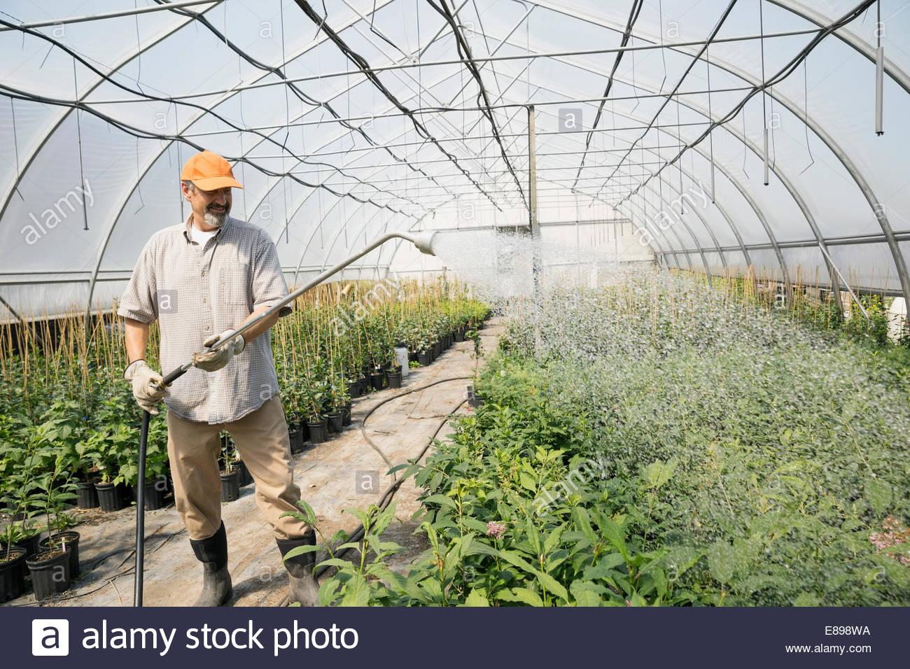 arbeiter, die bewässerung von pflanzen im gewächshaus pflanzen, Terrassen ideen