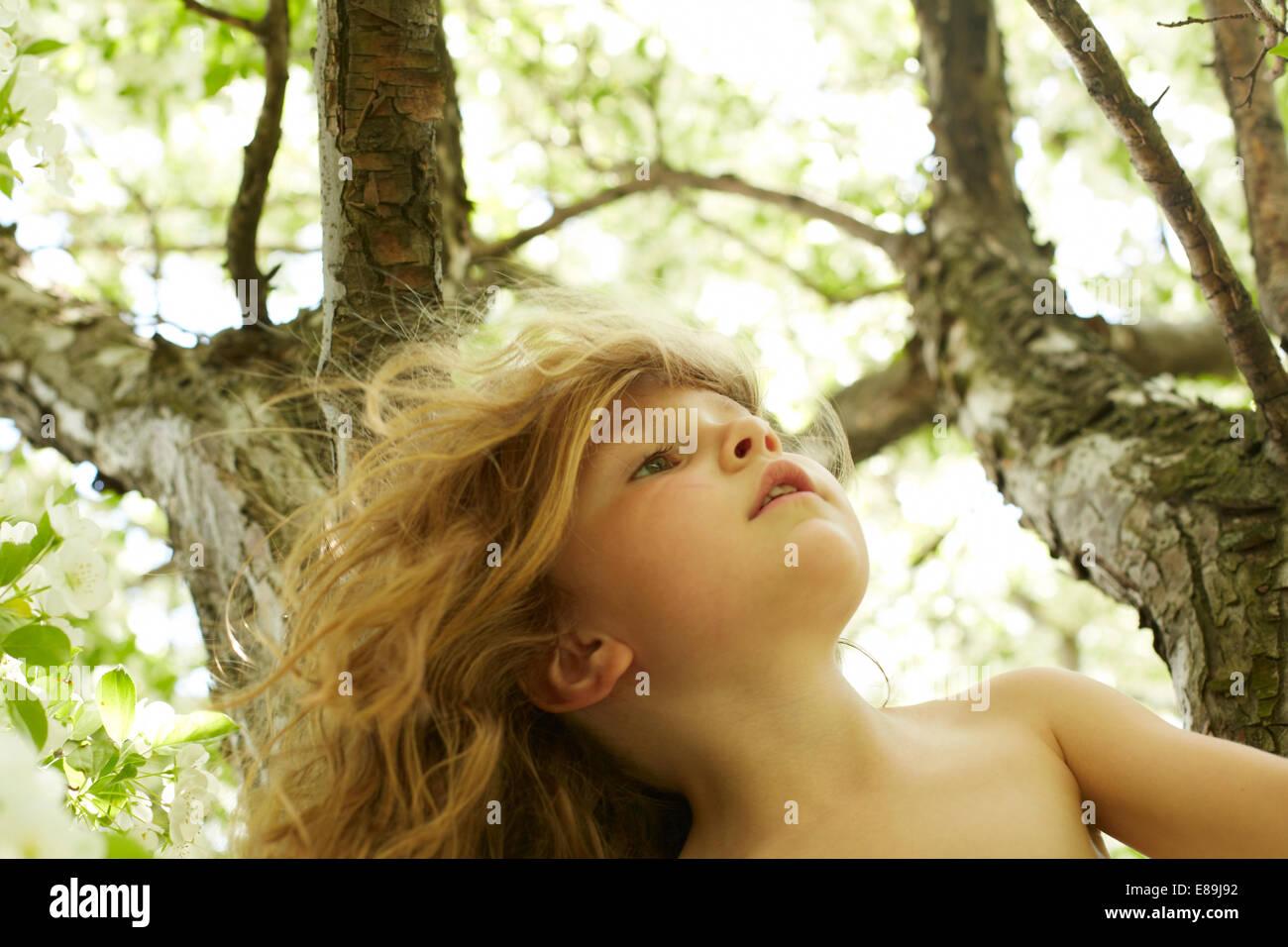 Mädchen-Kletterbaum Stockbild