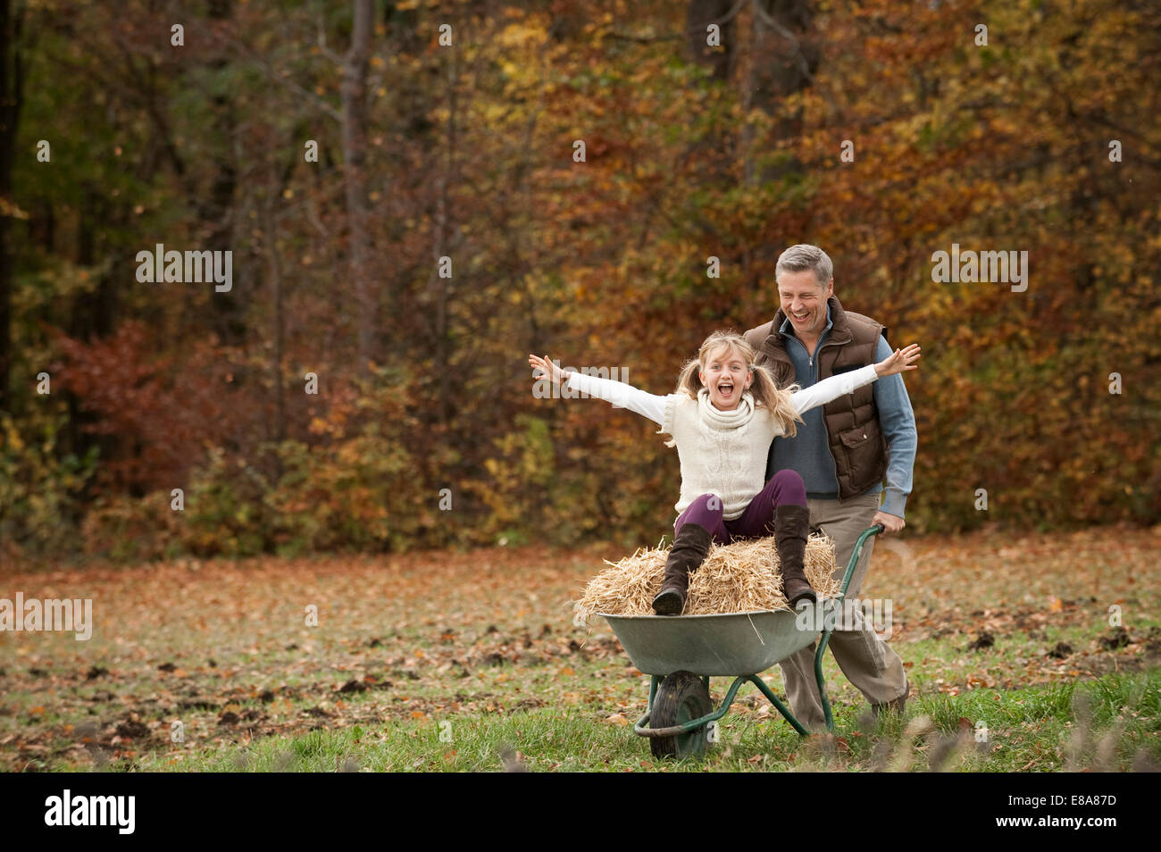 Vater schob glückliche Tochter in Schubkarre Stockbild