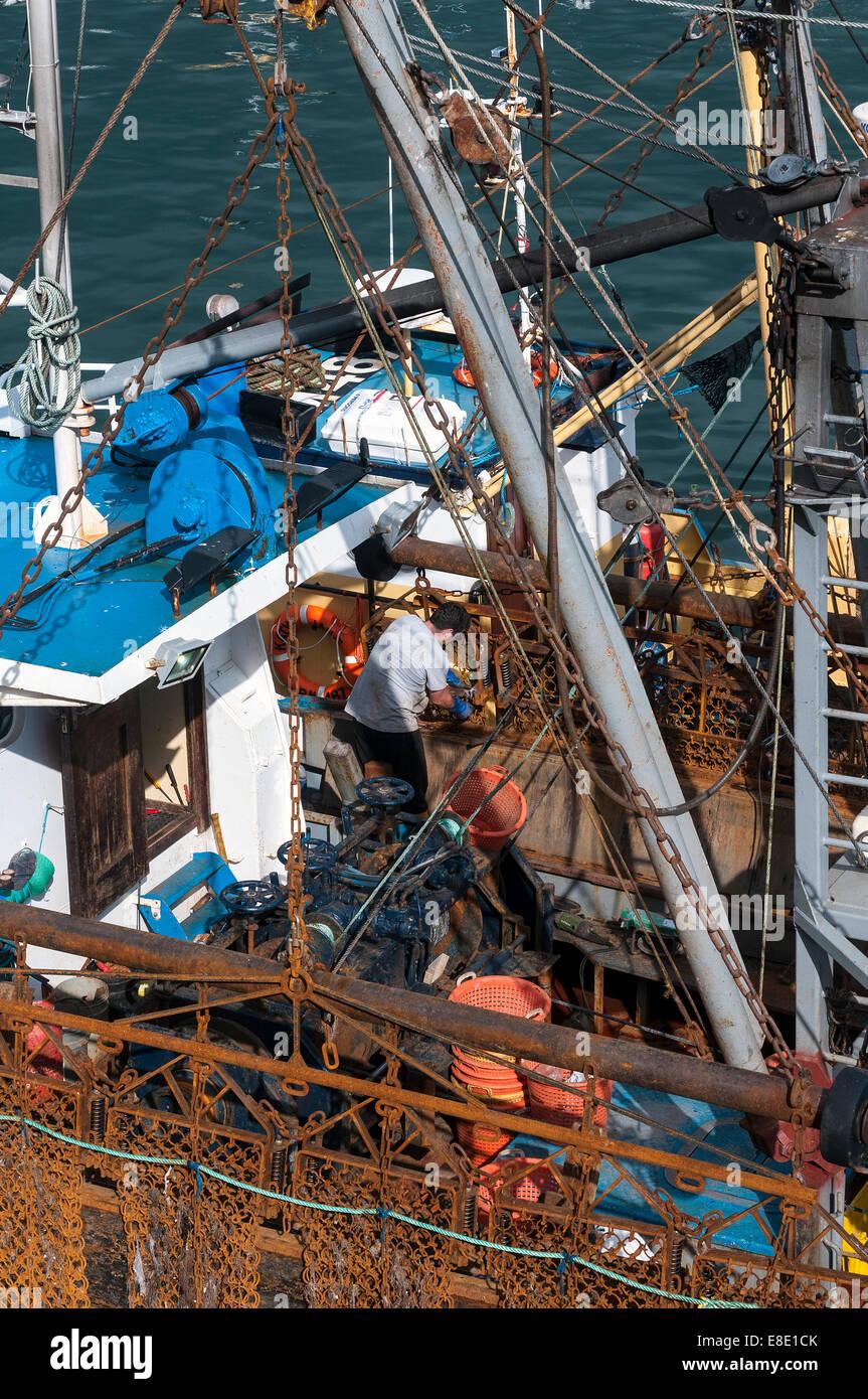 Brixham Angeln Flotte, Brixham Trawler Flotte, Koden, landeten britische Schiffe £27million von Fischen in Stockbild