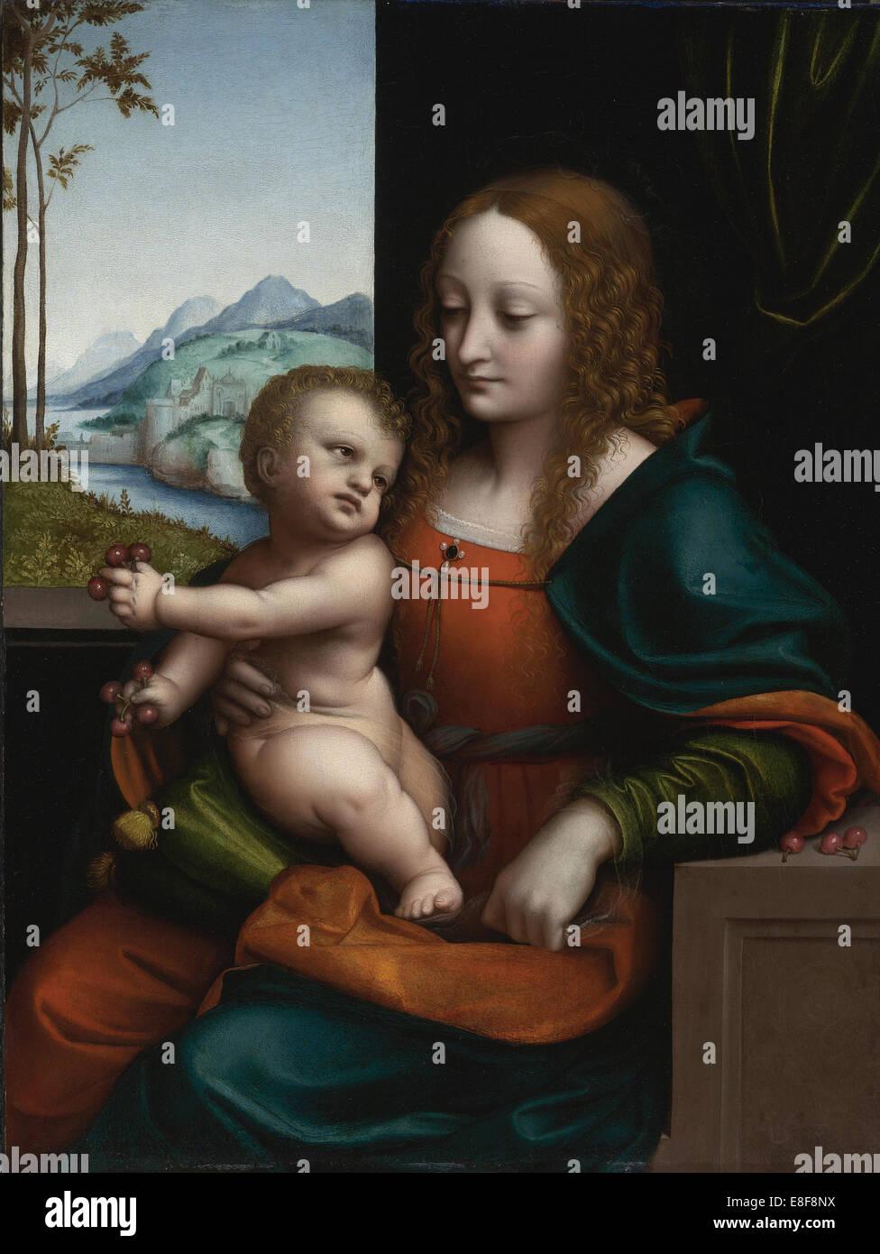 Madonna der Kirschen. Künstler: Giampietrino (1 Hälfte des 16. Jhs.) Stockbild