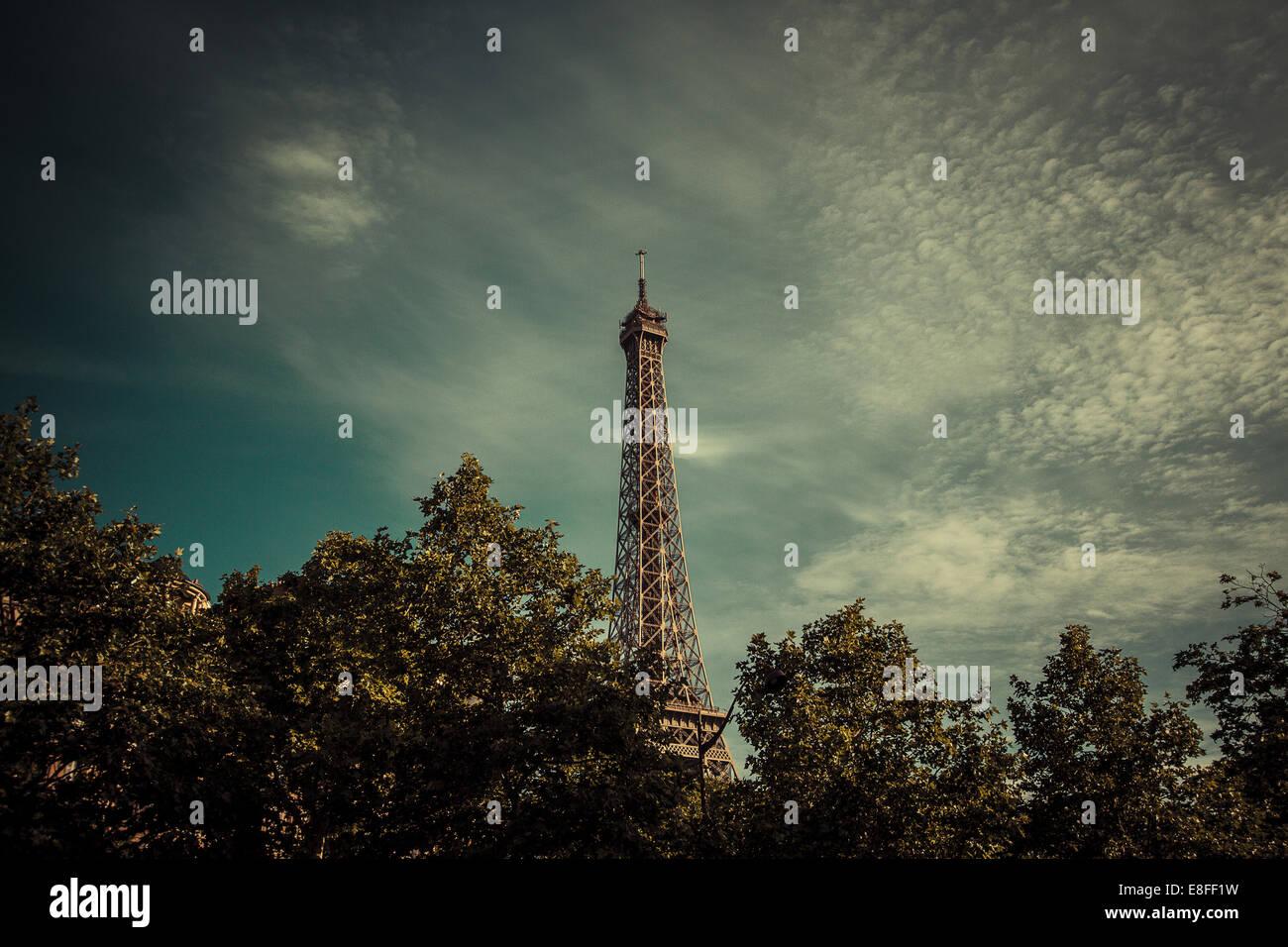 Eiffelturm über Baumkronen, Paris, Frankreich Stockbild