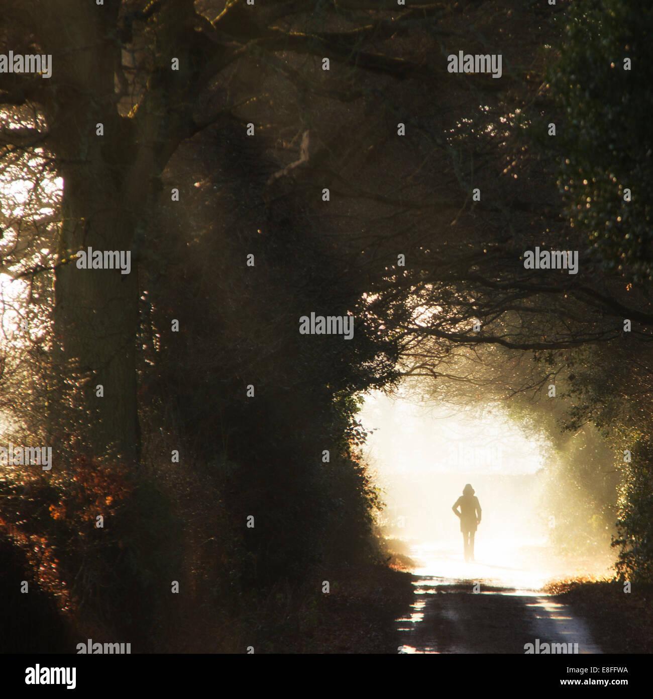 Rückansicht der Fußgänger in Sonne Stockfoto