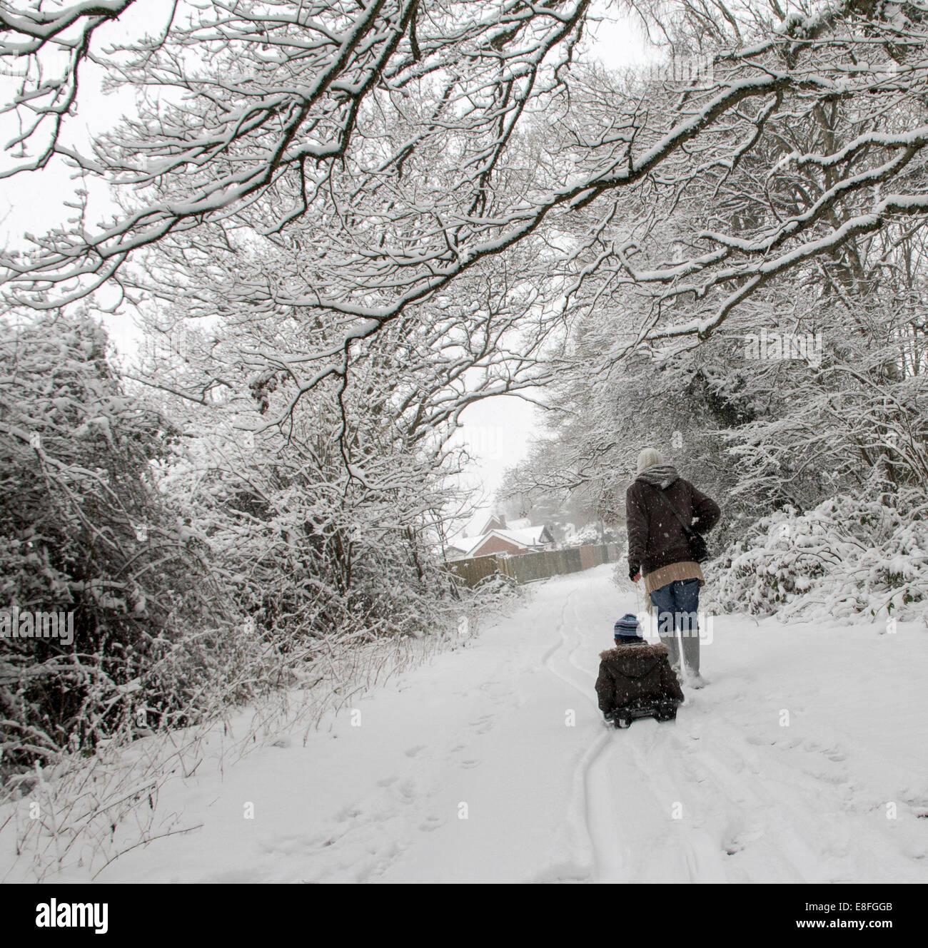 Zwei Personen auf Spaziergang im Wald im winter Stockbild